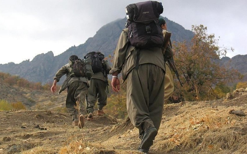 Suriya və İraqda döyüşmüş terrorçular Türkiyədə təslim oldular