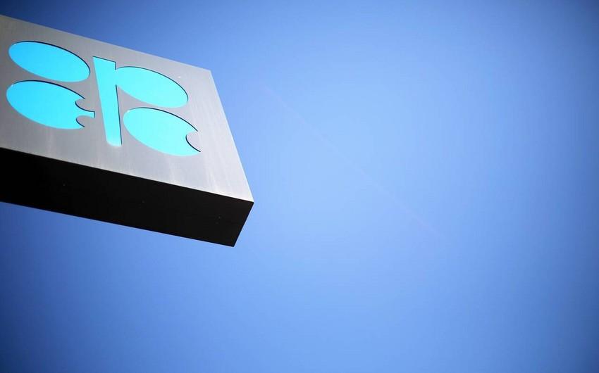 OPEC+in Monitorinq Komitəsinin növbəti iclası dekabrın 4-də Vyanada keçiriləcək