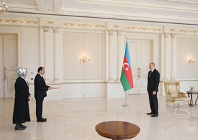 Ilham Aliyev to Turkish Ambassador: Welcome to Azerbaijan - your homeland!