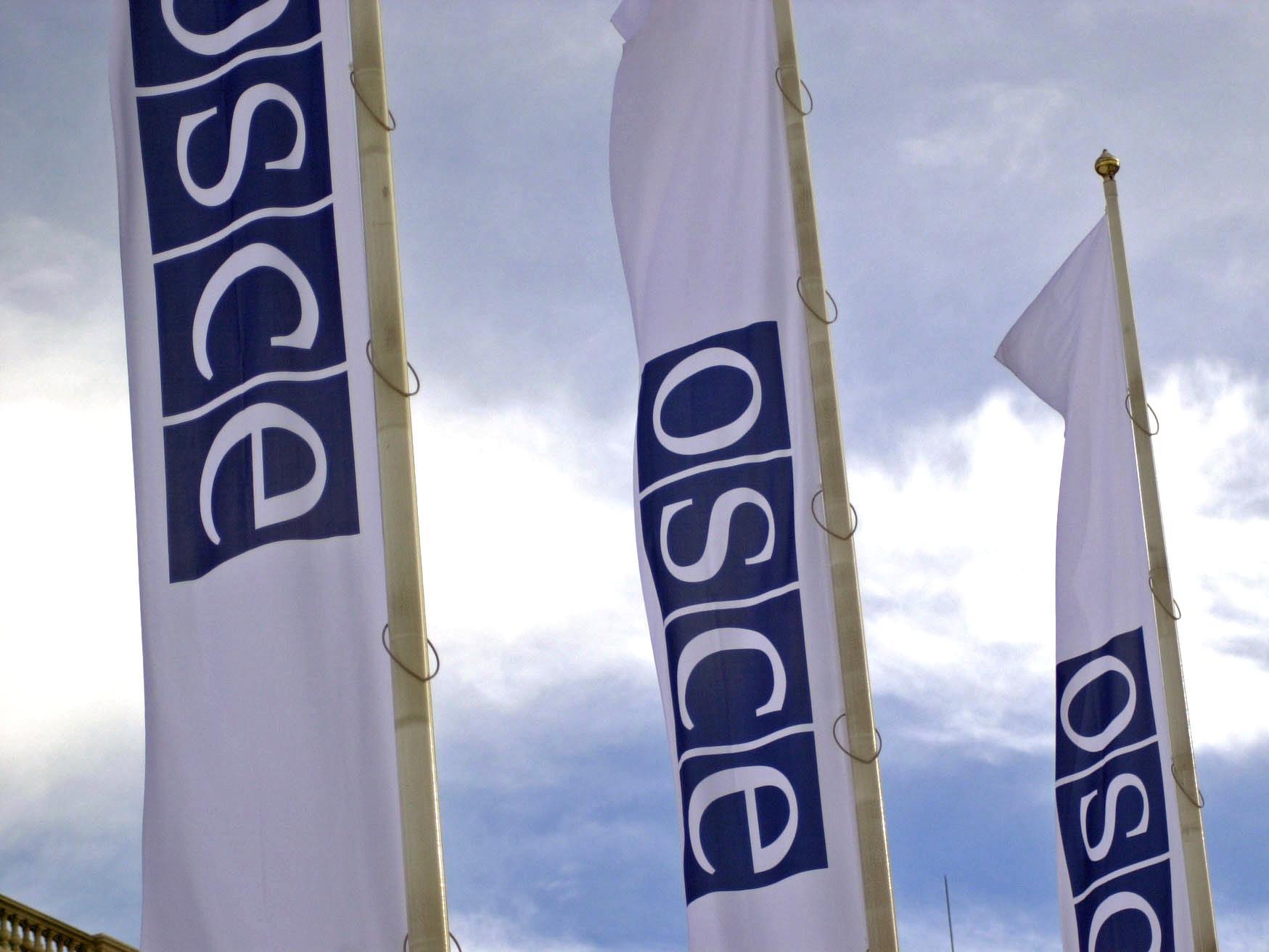 Неформальная министерская встреча ОБСЕ пройдет в июле