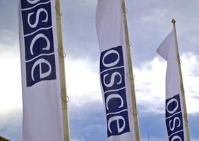 В ОБСЕ поприветствовали встречу глав МИД Азербайджана и Армении