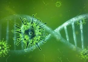 Снижение уровня летальности от COVID-19 может быть обусловлено его мутациями