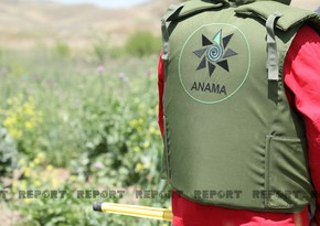 ANAMA: Enemy planted anti-personnel mines on anti-tank mines