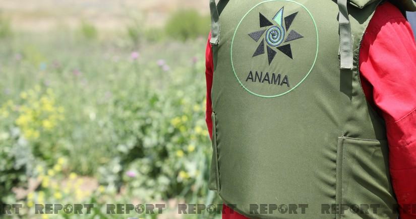 ANAMA: Враг закопал противопехотные мины поверх противотанковых