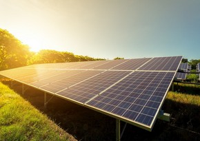 French expert: Alternative energy is a huge advantage