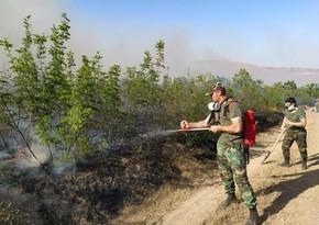 FHN ölkənin bəzi ərazilərində baş verən yanğınların səbəbini açıqladı