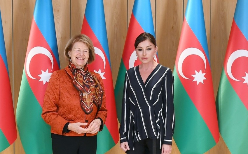 First Vice-President Mehriban Aliyeva met with UK Prime Minister's Trade Envoy to Azerbaijan