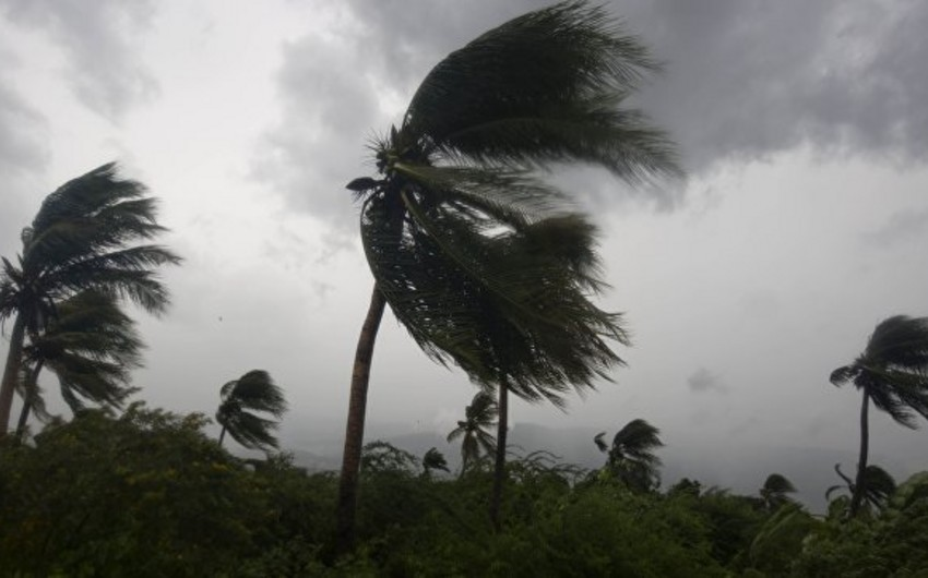ABŞ-da fırtına bir neçə nəfərin ölümünə səbəb olub