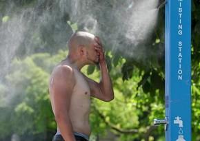 Аномальная жара на западе Канады могла привести к смерти почти 720 человек