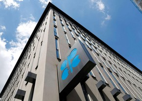 UAE may leave OPEC +