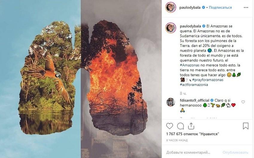 Dibala ictimaiyyətin diqqətini Amazon meşələrindəki yanğınlara yönəldib