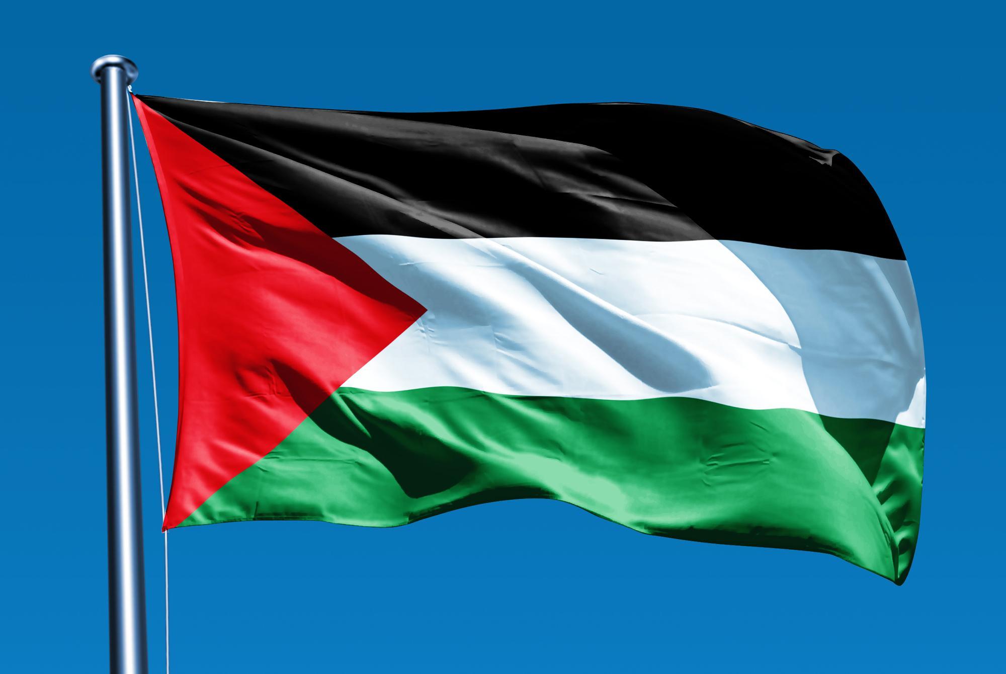 Замминистра иностранных дел Палестины находится с визитом в Азербайджане