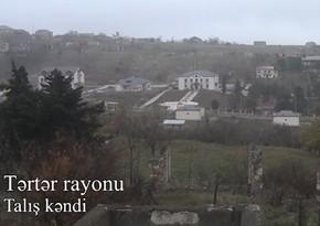 Tərtərin işğaldan azad olunan Talış kəndinin görüntüləri
