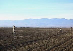 Azerbaijani, Turkish military sappers fulfill engineering support tasks