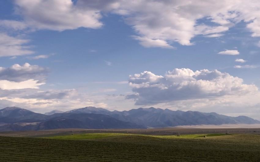 Montana ştatını satmaq üçün imzalar toplanılır