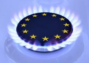 Европу ждет внутренняя борьба за газ