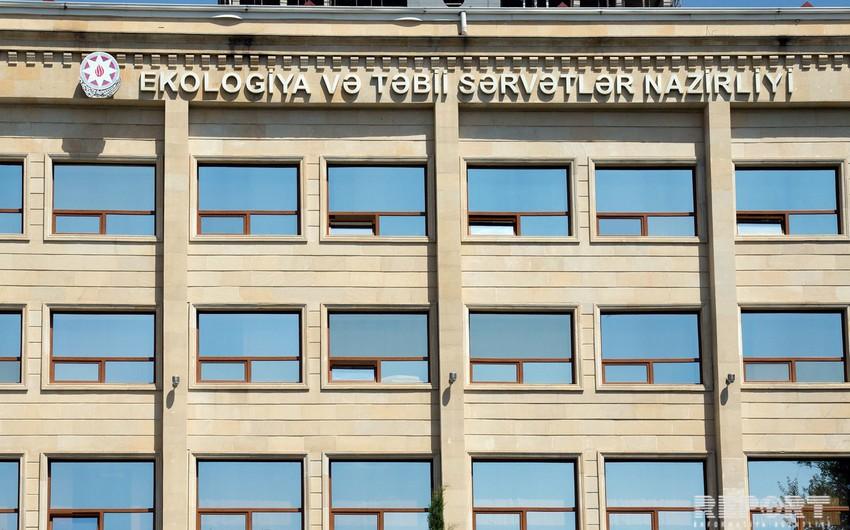 Azərbaycanda daha bir dövlət agentliyi yaradılır