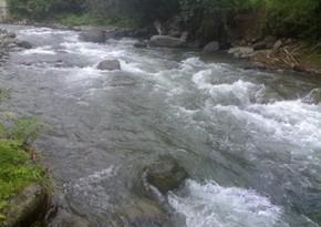 В Губадлы в реки выпущены мальки форели