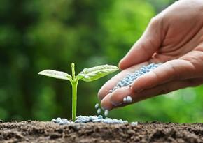 Азербайджан уменьшил импорт удобрений на 46%
