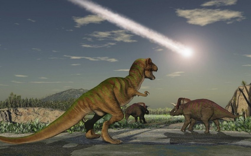 Researchers discover new mass extinction that paved way for dinosaurs