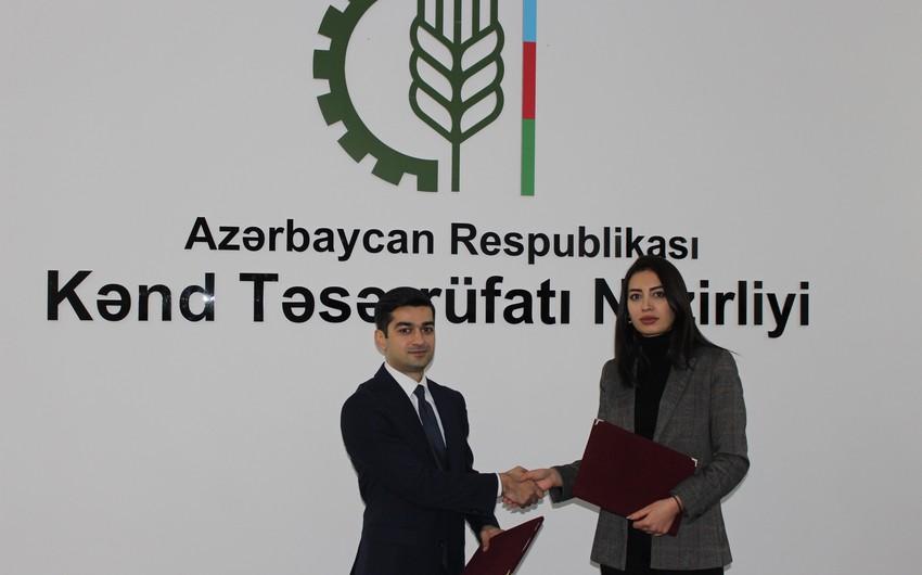 Dövlət Aqrar Ticarət Şirkəti və Bakı Turizm İnformasiya Mərkəzi əməkdaşlıq memorandumu imzalayıb