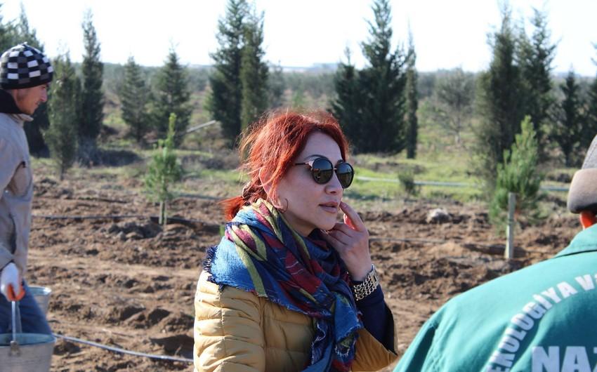 """Ekologiya və Təbii Sərvətlər Nazirliyinin sözçüsü """"Ən yaxşı mətbuat katibi"""" seçilib - FOTO"""