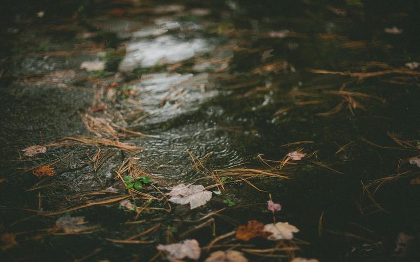Bakıda yağış axşama doğru kəsiləcək