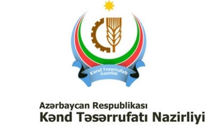 В Азербайджане начался процесс специализации регионов