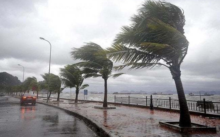 Cənubi Koreyada tayfun səbəbindən hava limanlarında uçuşlar təxirə salınıb