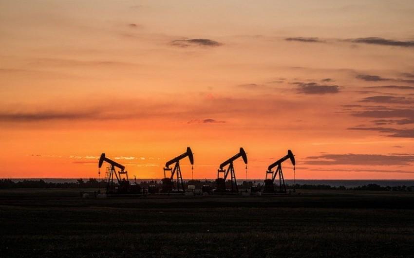 Hindistan İrandan neft alışını artırıb