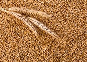 Азербайджан сократил импорт пшеницы на 13%