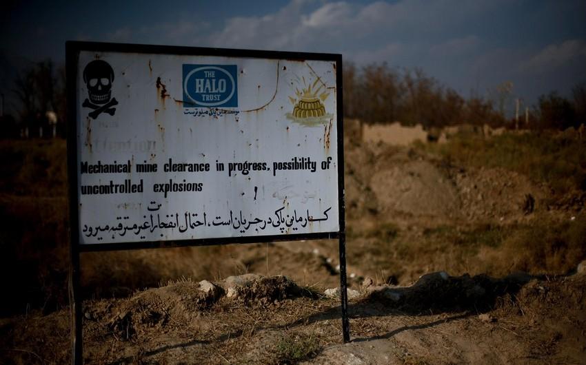"""Əfqanıstanda """"HALO Trust""""ın azı 10 işçisi öldürüldü"""