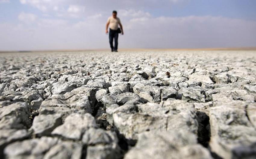 Hesabat: 2050-ci illərdə insanların yaşadığı ərazilərin təxminən 70 faizi su altında qalacaq