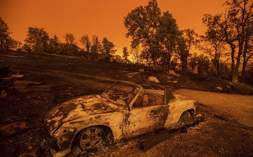 Kaliforniyada meşə yanğınları 5 nəfərin həyatına son qoyub