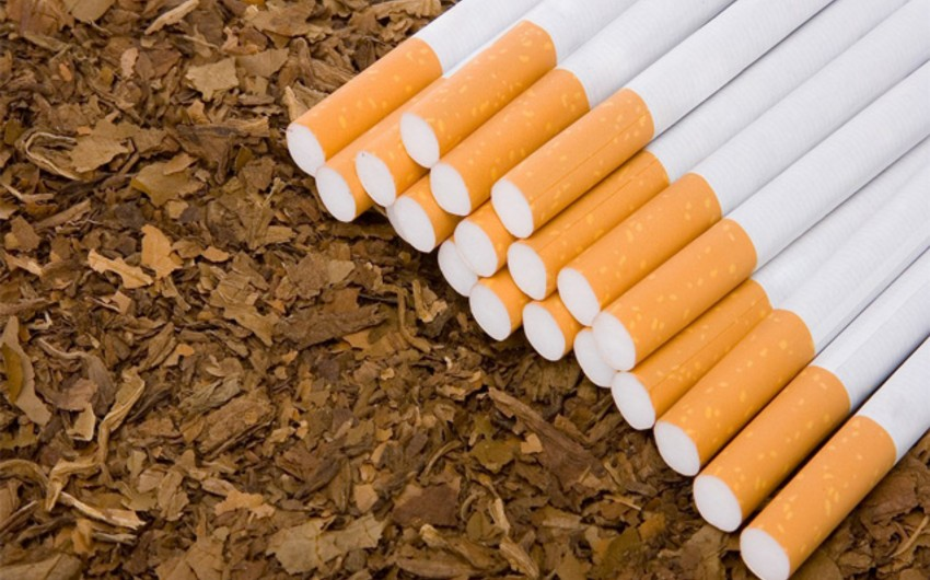 Bu il Azərbaycanın tütün ixracı 13% artıb