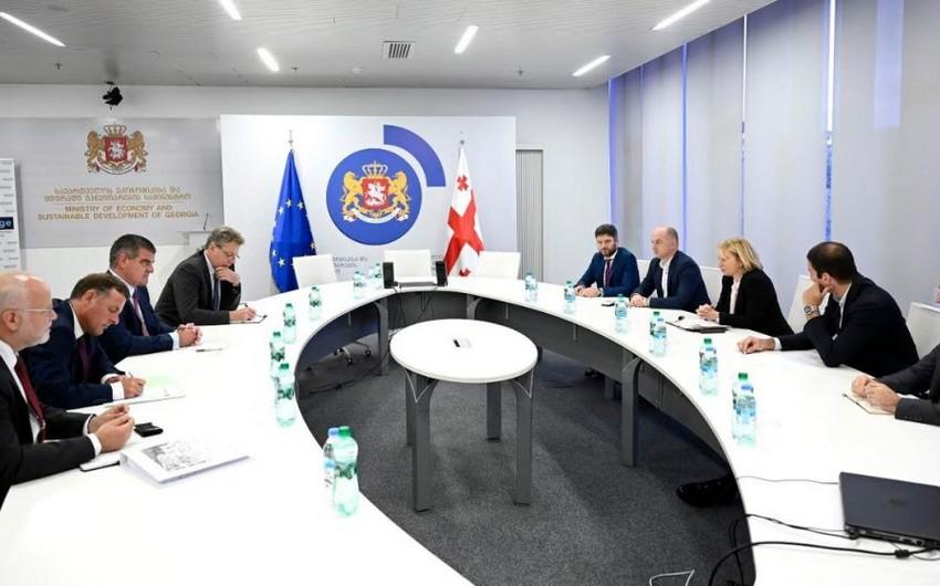 Stadler возобновил переговоры с правительством Грузии о строительстве завода