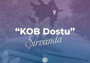 """Şirvan şəhərində """"KOB Dostu"""" fəaliyyətə başlayıb"""