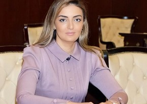 Konul Nurullayeva attends videoconference of PACE Committee