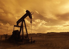Oil prices growing with optimism after lifting of quarantine restrictions
