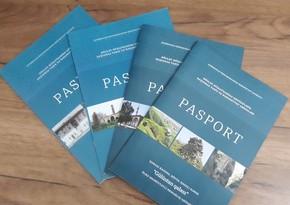 Tarixi abidələrin pasportları hazırlanıb, mühafizə zonaları müəyyən edilib