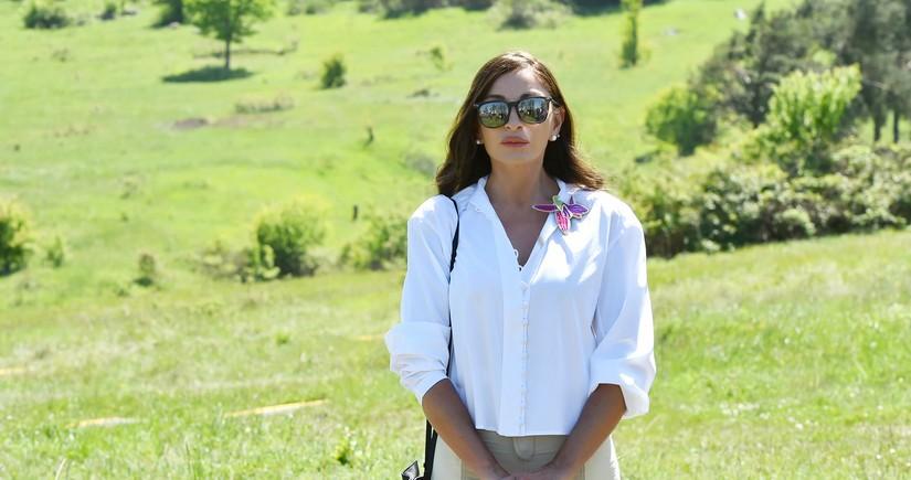 Мехрибан Алиева поделилась очередной публикацией о Карабахе