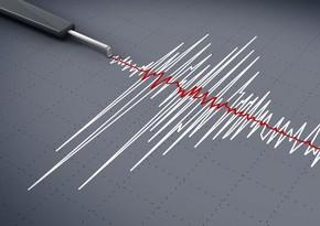 В Турции произошло землетрясение