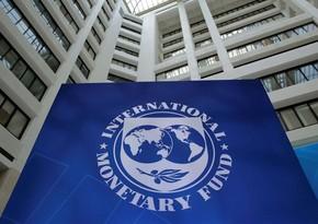 İMF: Regionun iqtisadiyyatı şaxələndirilməlidir