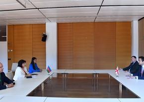 В Вене прошла встреча председателей парламентов Азербайджана и Грузии
