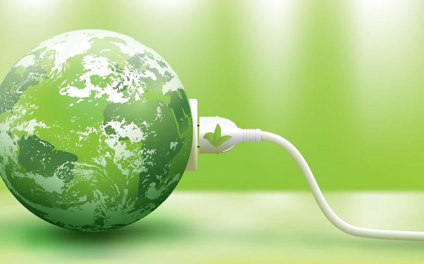 """Gələn aydan IKEA """"yaşıl"""" enerji satmağa başlayacaq"""