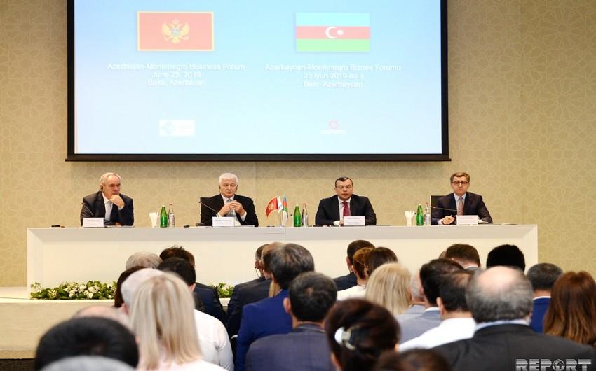 Bakıda Azərbaycan-Monteneqro biznes forumu keçirilir - ƏLAVƏ OLUNUB