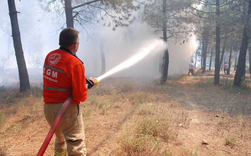 Number of active wildfires in Turkey drops to 5