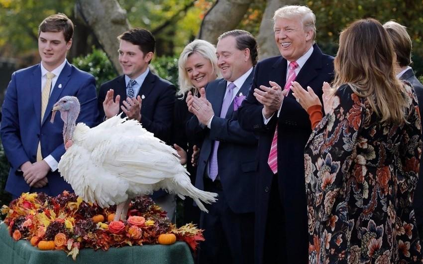 """Donald Tramp: """"ABŞ-da böyük fərq yaratdığım üçün özümə təşəkkür edirəm"""""""