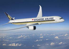 Singapore Airlines to cut 4,300 jobs due to pandemic
