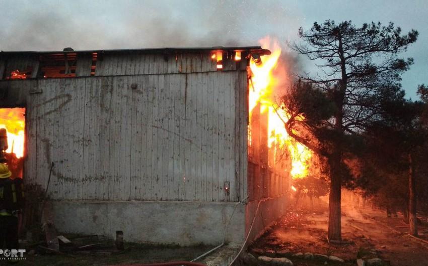 В связи с пожаром в наркологическом центре в Баку арестован один человек